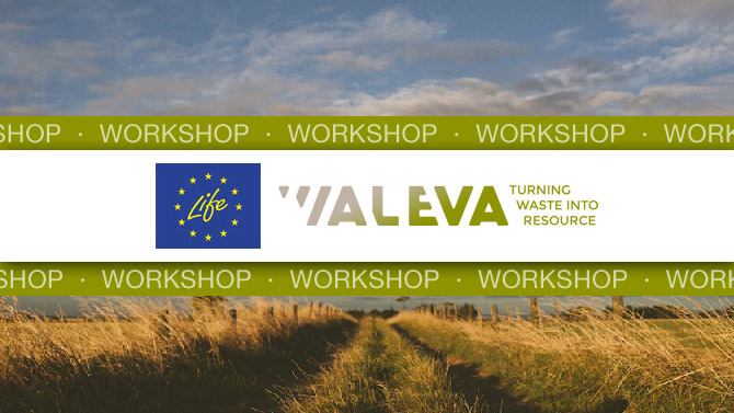 waleva-workshop-2017